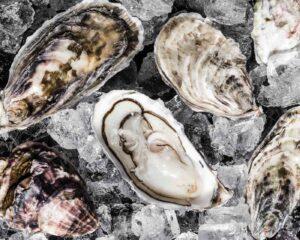 Gylly Beach Cafe, Falmouth oysters